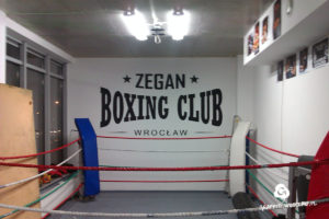 logo-na-scianie-zegan-boxing-club-2